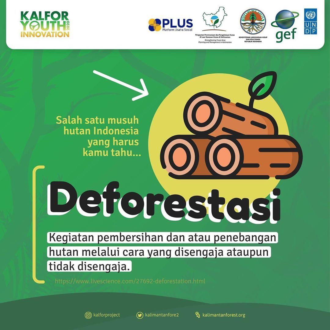 Indonesia dikaruniai oleh hutan tropis yang subur serta keanekaragaman hayati berlimpah. Tapi tahukah kamu, salah satu m...